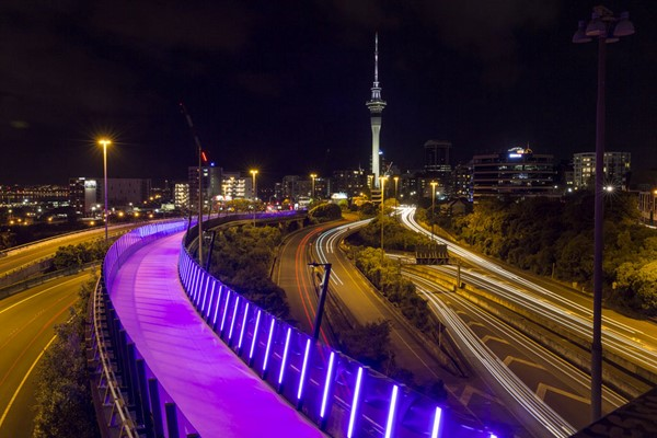 Auckland Lightpath